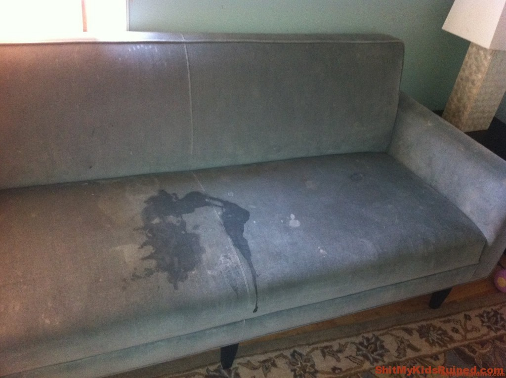Getting Stains Out Of Suede Couch Home Improvement : couch1 1024x765 from www.homeimprovementgalleries.club size 1024 x 765 jpeg 143kB
